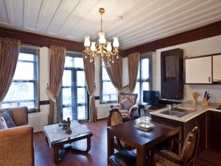 Ascot House Blue Mosque Apt - Istanbul vacation rentals