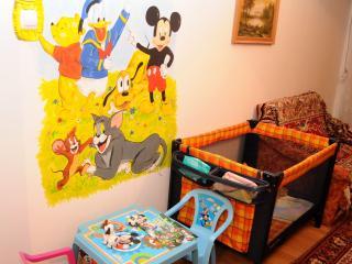 Cozy 2 bedroom Apartment in Piatra Neamt with A/C - Piatra Neamt vacation rentals