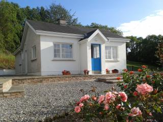 Cosy Cottage near Blackwater River - Aglish vacation rentals