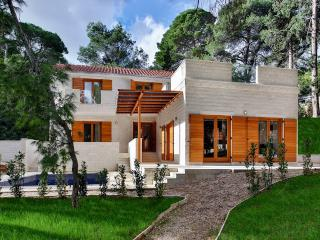 Bright 4 bedroom Villa in Rogac - Rogac vacation rentals