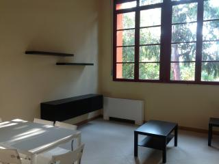 Directly on the beach C3 - x 8 persons - Tirrenia vacation rentals