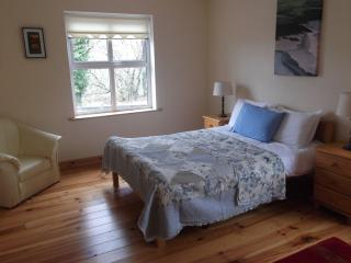 Fermoyle Cottage-On the Wild Atlantic Way! - Fanore vacation rentals