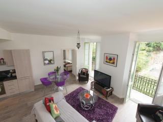 Roomy 2 bedroom holiday apartment in Nice with bal - Nice vacation rentals