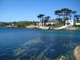 Perfect House with Internet Access and Tennis Court - Schull vacation rentals
