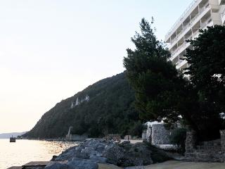 Dream House - Trieste vacation rentals