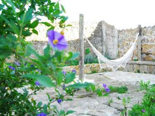 Cellar House - Lavenders farm - Ericeira vacation rentals