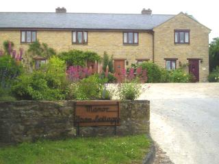 Nice 2 bedroom Chipping Campden Cottage with Internet Access - Chipping Campden vacation rentals