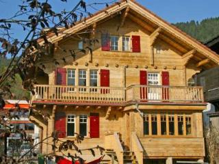 Nice Villa with Internet Access and DVD Player - Villars-sur-Ollon vacation rentals