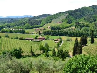 Staffed Tuscan farmhouse with shared outdoor pool, games room and amazing views, sleeps seven - Lucca vacation rentals