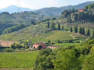 Marietto's House: Rustic Tuscan villa near historic Lucca - Lucca vacation rentals