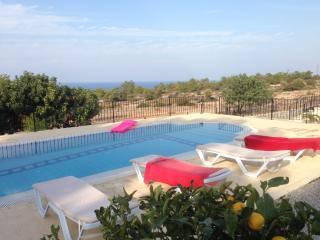 Pine Tree Villa - Ayios Amvrosios vacation rentals