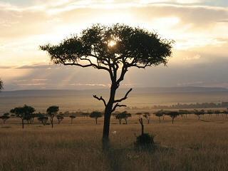 Mara Enkipai House - Masai Mara National Reserve vacation rentals