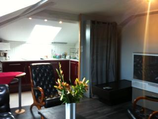 Appartement indépendant 3 pieces climatise - Lyon vacation rentals
