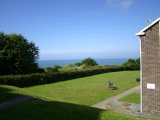 Holiday Home in New quay , Ceredigion ,West Wales - New Quay vacation rentals
