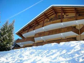3 bedroom Condo with Internet Access in Chatel - Chatel vacation rentals