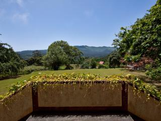 Quinta das Colmeias - both houses - Santo da Serra vacation rentals