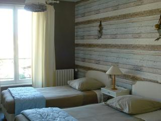 Cozy 1 bedroom Vacation Rental in Castres - Castres vacation rentals