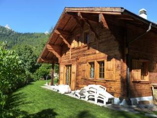 Nice Villa with Washing Machine and Grill - Ovronnaz vacation rentals