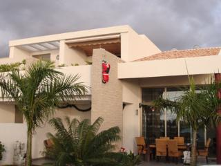 AMAZING VILLA - Costa Adeje vacation rentals