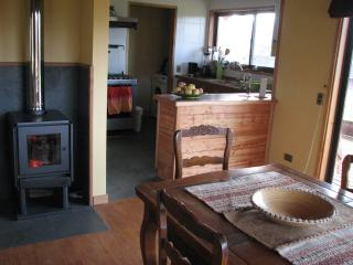 Beautiful 3 bedroom Pucon Cabin with Internet Access - Pucon vacation rentals