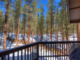 Spacious Lake Village Condo with Forest Views ~ RA845 - Glenbrook vacation rentals