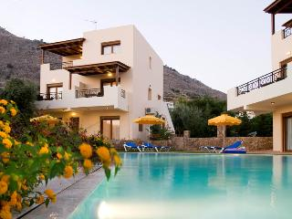 EXECUTIVE VILLA - Pefkos vacation rentals