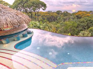 Villa Tucan Tango - Luxury-  Infinity Pool - Spect - Dominical vacation rentals
