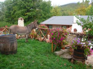 Cozy 1 bedroom Farmhouse Barn in L'Aquila with A/C - L'Aquila vacation rentals