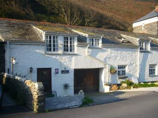 Romantic 1 bedroom Cottage in Boscastle with Internet Access - Boscastle vacation rentals