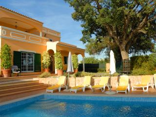 Big Villa with Pool & tennis court, car avaiable - Quelfes vacation rentals