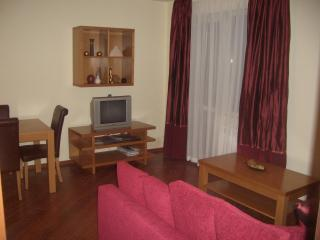 Bojurland - first floor with lift - Bansko vacation rentals