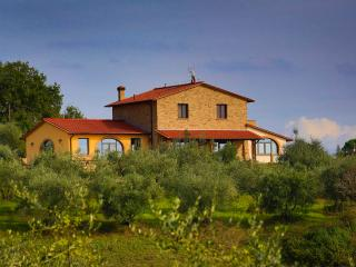 La Bambagina - Castelfiorentino vacation rentals