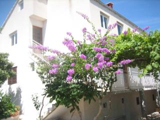Vacation Rental in Peljesac peninsula