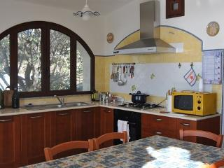 Apt for 4/5 in front of the sea - Cala Liberotto vacation rentals