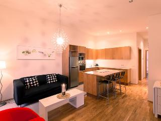 Reykjavik Central Apartment - Reykjavik vacation rentals