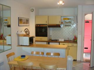 Charming Condo with Dishwasher and Garden - Carces vacation rentals