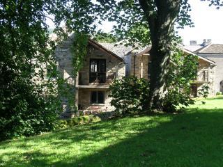 Alston Art Apartments - Alston vacation rentals