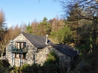 Blue Peris Cottage - Llanberis vacation rentals