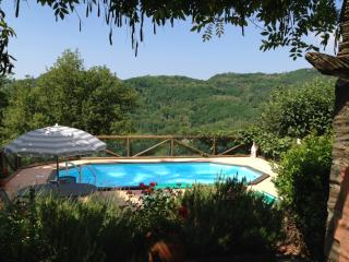 Secluded, traditional Italian villa with private grounds, pool and terrace, sleeps 7 - Bagni Di Lucca vacation rentals
