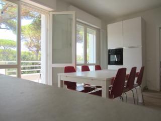 3 bedroom Condo with Dishwasher in Tirrenia - Tirrenia vacation rentals
