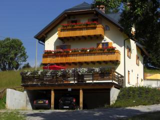 Cozy 1 bedroom Apartment in Tarvisio with Internet Access - Tarvisio vacation rentals