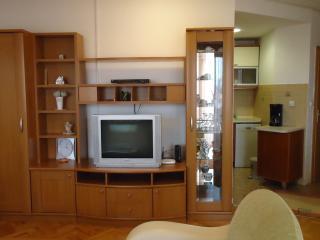 Cozy 3 bedroom Skopje Apartment with Internet Access - Skopje vacation rentals