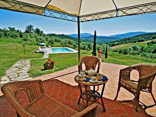 Charming cottage with private pool, peaceful & panoramic position - Radicondoli vacation rentals