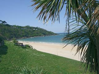 Perfect 2 bedroom Condo in Saint Ives - Saint Ives vacation rentals