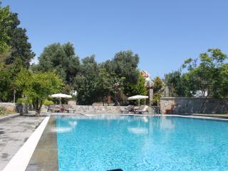 Spacious Villa with Internet Access and A/C - Gumusluk vacation rentals