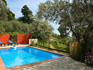 Private pool villa Pegasus - Potami vacation rentals