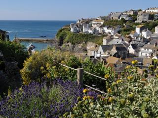 Beautiful 3 bedroom Cottage in Port Isaac with Internet Access - Port Isaac vacation rentals