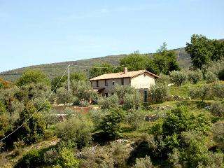 Detached villa with private pool 500m Montecchio - Montecchio vacation rentals