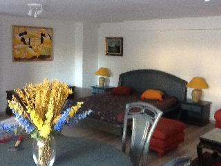 Nice Condo with Internet Access and Central Heating - Veyrier vacation rentals
