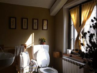 Cascina Parinot (alla porta delle langhe) - Bene Vagienna vacation rentals